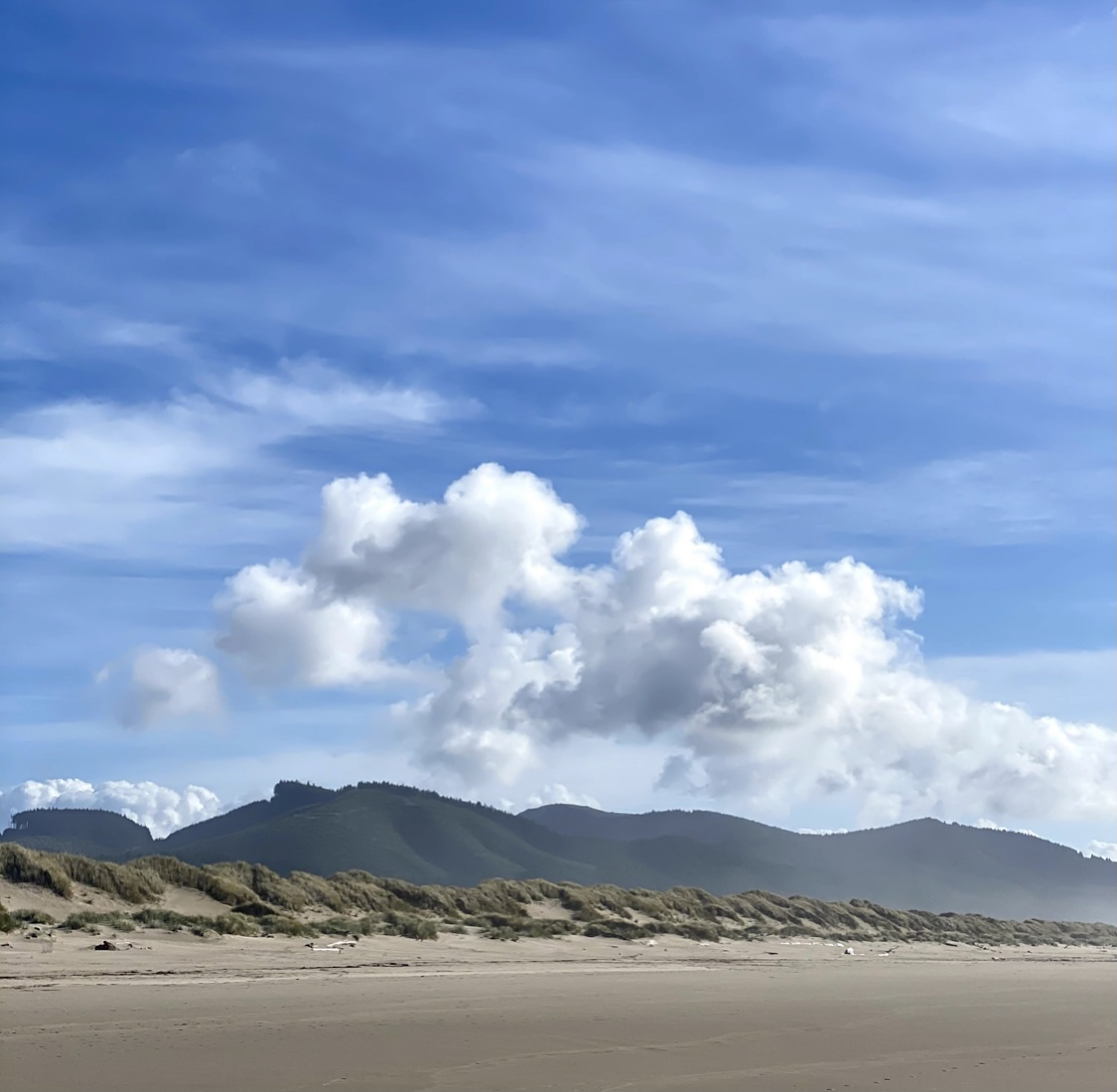 Walking the Beach in Nehalem Bay State Park Savory Travel Adventures Steven Shomler