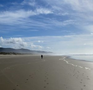 Walking the Beach in Nehalem Bay State Park – Adventures on The Oregon Coast Steven Shomler